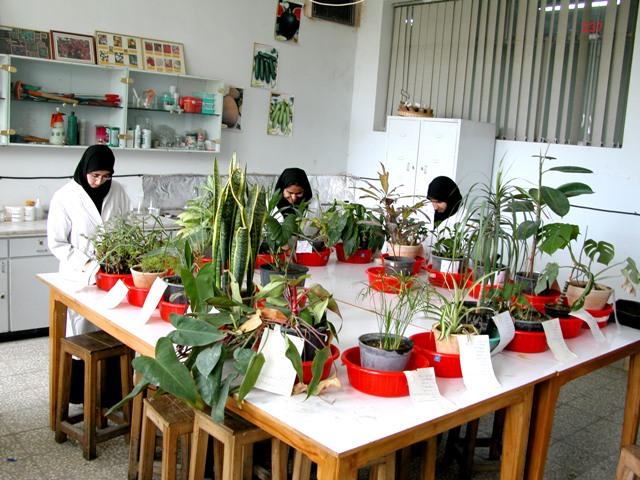 رئیس پارک فناوری میلان(ایتالیا) در جریان بازدید از واحد خوراسگان(اصفهان) عنوان کرد: سطح فعالیتهای علمی و تحقیقاتی دانشگاه آزاد سلامی واحد خوراسگان(اصفهان) بسیار عالی است و مرا شگفت زده کرده است